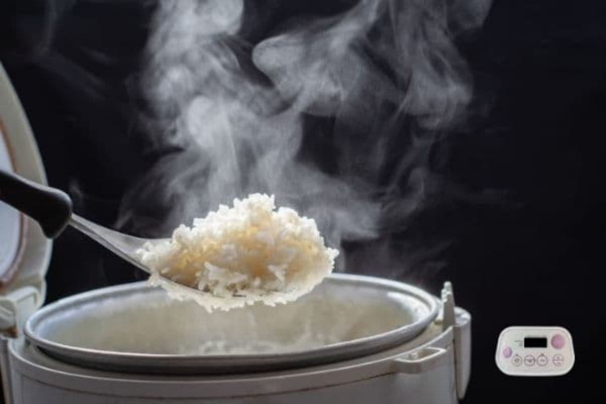 Best cheap rice cooker review