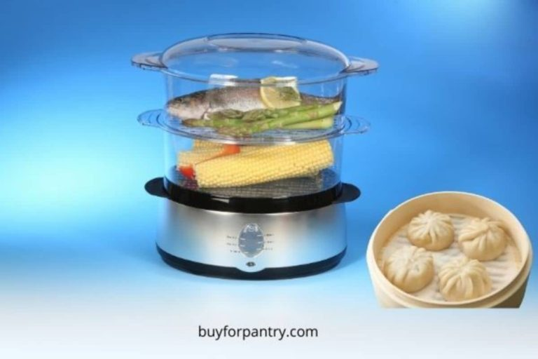 Best electric food steamer BPA free